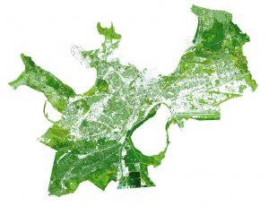 Katrin Koov ja Eve Komp. Näilise roheluse kaart